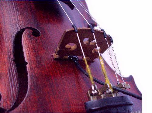 Tav Pickups Violin Fiddle Cello Double Bass Sitar